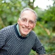 Dr Stephen Harding — York Mediale